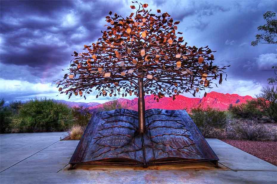 درخت خرد