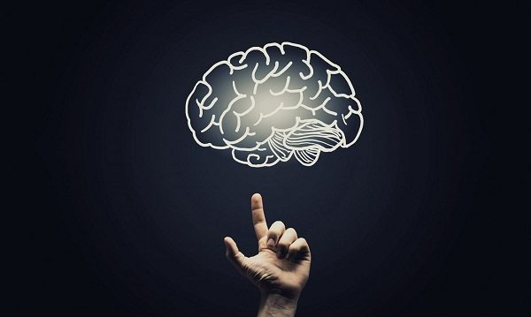 Daily-Brain-Exercises-for-a-Healthy-Mind-and-Life