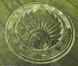 crop circles3-1