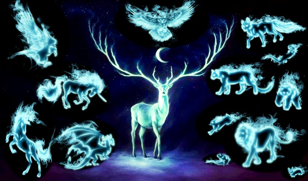 Power Animals Spirit