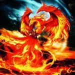 تصویر پروفایل GOLDENPHOENIX999999999