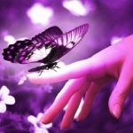 تصویر پروفایل baharr