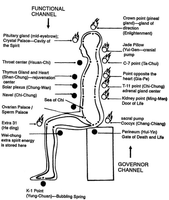 بدن انرژی